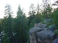Meadow Camp Climbing - Bend, Oregon
