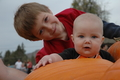 The boys and the pumpkins